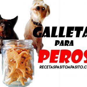 galletas para perros